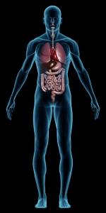 stomach-internally