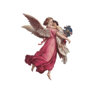 angel-light-academy_for_phone2