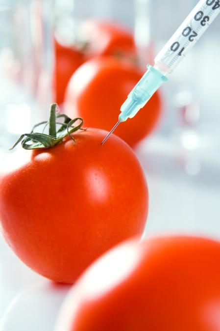 Perfect tomato.